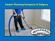 Choosing The Right Carpet Cleaning Company In Calgary
