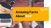 Amazing Facts About SEO