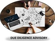Due Diligence Advisory Services for the Business