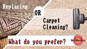Replacing or Cleaning Carpets What do you Prefer?