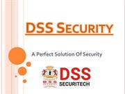 DSS Security a perfect solution of all Security related problems