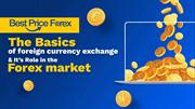 The Basics of Foreign Currency Exchange