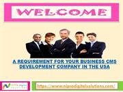 A Requirement for your Business CMS Development Company in the USA