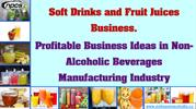 Soft Drinks and Fruit Juices Business