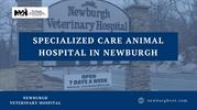 Specialized Care Animal Hospital in Newburgh