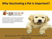 High quality Low cost pet vaccinations - AskTheVet