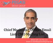 Chief Marketing Officer Email List_ CMO Mailing List in usa