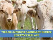 Tips On Livestock farming by Hunter Livestock Ireland