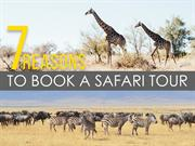 7 Reasons to Book a Safari Tour