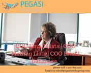 COO Email Lists _ COO Mailing Lists _ COO Email Database in USA