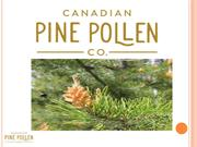 Why Pine Pollen Harvesting Has Now Become Popular