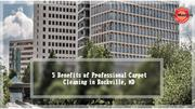 5 Benefits of Professional Carpet Cleaning in Rockville, MD