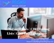 CDO Email Lists and Mailing Lists,Email Database in usa