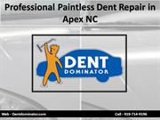 Professional Paintless Dent Repair in Apex NC