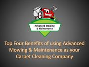 Top Four Benefits of using Advanced Mowing & Maintenance as yourCarpet