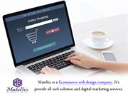 E-commerce Development Tips - Matebiz India