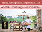 Looking Flying Pig Ibiza Wedding Services in Spain