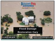 Expert of Flood Damage Restoration Cary NC
