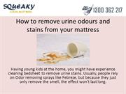 How to remove urine odours and stains from