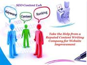 Take the Help from a Reputed Content Writing Company for Website Impro