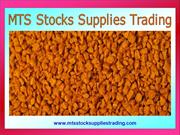Almond Nuts Supplier