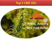 Best CBD Oils For Anxiety and Pain Relief