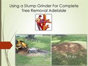 Using a Stump Grinder For Complete Tree Removal Adelaide