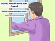 How to Remove Mold from Drywall by Carolina Water Damage Restoration