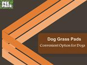 Dog Grass Pads - Convenient Option for Dogs