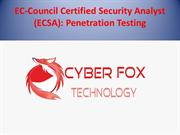 EC-Council Certified Security Analyst free book download
