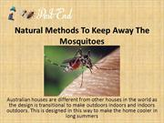 Natural Methods To Keep Away The Mosquitoes