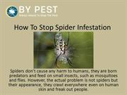 How To Stop Spider Infestation
