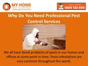 Why Do You Need Professional Pest Control Services