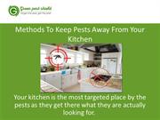 Methods To Keep Pests Away From Your Kitchen
