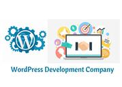 Looking For Wordpress Development Company In India