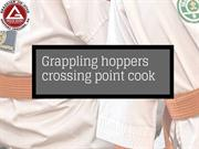Grappling hoppers crossing point cook
