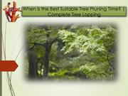 When is the Best Suitable Tree Pruning Time? | Complete Tree Lopping