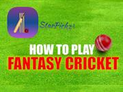 Play cricket and win cash prizes