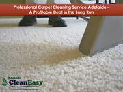 Professional Carpet Cleaning Service Adelaide A Profitable Deal in the