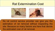 Rat Control Services - Expert Treatment for Rat Infestations