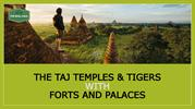 The Taj Temples Family Holiday Tour and Travel packages India
