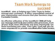 Team Work Synergy to succeed
