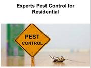 Best Pest Control Services at Alexandria Pest Control