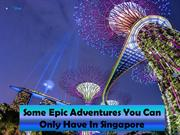 Some Epic Adventures You Can Only Have In Singapore