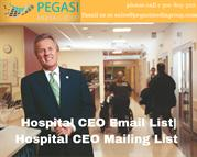 Hospital CEO Email List_ Hospital CEO Mailing List in usa