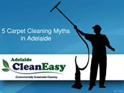 5 Carpet Cleaning Myths in Adelaide