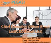 Chief Executive Officer Email List(CEO Email List)