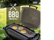 charcoal Barbecue Grill india