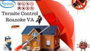 Termite Control Roanoke VA | Pest Control Roanoke VA