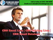 CRO Email Lists _ CRO Mailing Lists _ CRO Email Database in usa